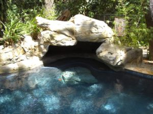 Faux Rock Design and constructed by Sammet Pools
